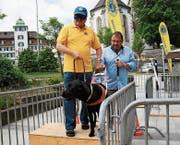 Peter Danuser, Präsident des Lions Club Herisau, lässt sich vom Blindenführhund Aiko durch den Parcours führen. (Bild: PD)