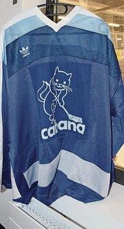 Hockeykatze ersetzt die schlafende Katze des Sponsors.
