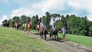Ein gemütlicher Ausritt mit Pferd und Wagen. (Bild: Lukas Hutter)
