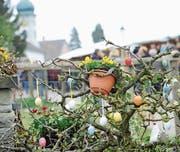 Ein Hauch von Frühling, bevor der Schnee zurückkehrte (Bild: Rudolf Steiner)