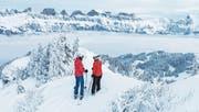 Die Bergbahnen Flumserberg AG verzeichnet eine äusserst positive Festtagsbilanz. Spitzentage waren der 29. und 30. Dezember. Aber auch an den anderen Tagen lohnte sich ein Ausflug auf den Berg. (Bild: PD)