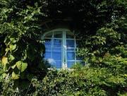 Das Fenster von Mia Hesses Zimmer im Haus in Gaienhofen. (Bild: Urs Oskar Keller)