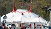Heute abend ist im Zelt des Circus Knie offizielle Buchser Premiere mit dem Programm «Smile». (Bilder: Hansruedi Rohrer)