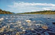 Aktuell rieselt der Fluss über Kiesbänke. Doch daneben gibt es mannstiefe Rinnen mit starker Strömung. (Bild: Wisi Langenegger)