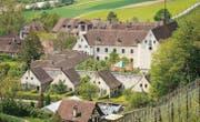 Die Thurgauer Regierung will an der Kartause Ittingen als Standort des Kunstmuseums festhalten. (Bild: Reto Martin)