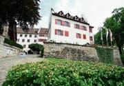 Zwei bis vier Fachteams sollen sich konzeptionell mit der Zukunft und den Nutzungsmöglichkeiten des Schlosses befassen. (Bild: Max Eichenberger)