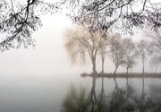 Nebel ist trotz der Computermodelle schwierig vorauszusagen. (Bild: Fotolia)