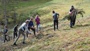 Insgesamt 20 Jugendliche sind diese Woche im Arbeitseinsatz für das Landschaftskonzept Neckertal.