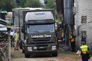 Die Untersuchungskommission wird klären, ob der Fall Hefenhofen Änderungen im Vollzug des Tierschutzgesetzes im Kanton Thurgau nach sich ziehen wird. (Bild: Manuel Nagel)
