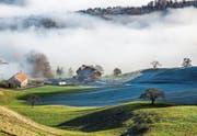 Die Zahl der Landwirte, die in der Schweiz einen Hof suchen, ist viel höher als das Angebot. (Bild: Patrick B. Krämer/Keystone)