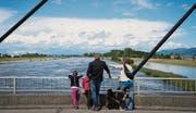 Diepoldsau - Rhein führt Hochwasser Viele Schaulustige säumen das Ufer (Bild: Ralph Ribi (Ralph Ribi))