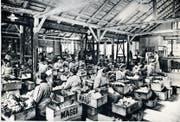 Im Zuge der Industrialisierung waren in den Fabriken immer wieder Frauen- und Kinderhände gefragt, wie hier in der Gemüserüsterei der Firma Maggi. (Bild: PD/Historisches Museum Thurgau)
