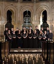 Der Tenebrae Chor gehört zu den führenden Vokalensembles. (Bild: PD)