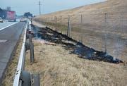 Das Wiesenbord neben der Autobahn geriet in Brand, wahrscheinlich wegen Raucherwaren, die aus einem Autofenster geworfen wurden. (Bild: Kapo SG)