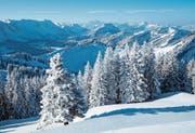 Wintermärchen auf dem Kronberg
