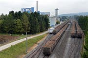 Die Werdenberger Zuckerrüben fahren mit der Bahn nach Frauenfeld in die Zuckerfabrik. (Bild: Nana do Carmo)