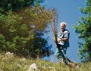 Als Landwirt lebt Roland Bischof so, wie es die Natur fordert. Tiere und Wetter geben den Takt an – vom «Öberefahre» bis zum Aufräumen im Herbst. (Bild: Urs Bucher (Urs Bucher))
