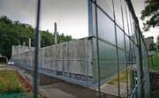 Turnhalle St. Gallen-Riethüsli: Weil an den Dachträgern verstärkende Bauteile weggelassen wurden, stürzte sie im Februar 2009 ein. (Bild: Ralph Ribi)