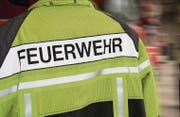 In Bereichen wie Einsatz und Ausbildung arbeiten die Feuerwehren von Goldach, Steinach und Horn zusammen. (Bild: Rudolf Hirtl)