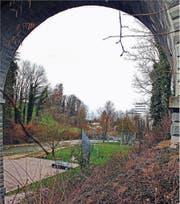 Über die Goldach, durch Naturschutzgebiet und Wald und in einem Hang: So würde der Abschnitt Bahnviadukt bis Bruggmühle einer Umfahrungsstrasse verlaufen. (Bild: Fritz Bichsel)