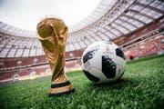 """Der legendäre WM-Pokal und der offizielle Ball """"Telstar"""" werden im Moskauer Luschniki-Stadion präsentiert. (Bild: ARSEN GALSTYAN (EPA))"""