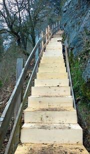 Die Treppe an der Felswand Ochsenberg vom Rundweg Bürgerwingert zur Burg Wartau wurde durch das Wanderwegli-Team erneuert. Der Rundweg Burghalde ist wieder begehbar. (Bild: PD)