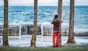 Am Bodensee in Rorschach kreierte die Eiseskälte wahre Kunstwerke. (Bild: Urs Bucher)