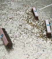 Vor der Abstimmung «Bedingungsloses Grundeinkommen» wurden Fünfräppler auf dem Bundesplatz ausgeschüttet. Die Idee des Grundeinkommens möchte Rebecca Panian mit einem Experiment testen. (Bild: PD)