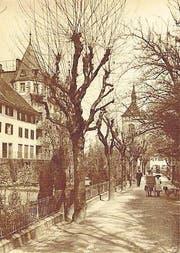 Die Promenadenstrasse beim ehemaligen Stadtgraben war Spazier-Allee; rechts eine kolorierte Postkarte. (Bilder: Historisches Museum im Schloss Arbon)