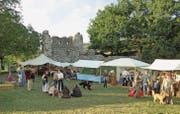 Mittelaltermarkt bei der Ruine Helfenberg vor einem Jahr: Heuer findet der Anlass in Pfyn statt. (Bild: Evi Biedermann)