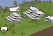 Das in Diskussion stehende Projekt von Hansjörg Egli, das er am Unterlindenberg verwirklichen möchte. (Bild: Visualisierung: pd)