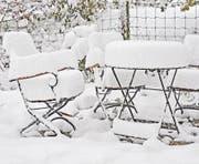 Schnee ist wichtig als Frostschutz für unsere Pflanzen und als Dekorationselement unseres Gartens. (Bild: Bert Stankowski)