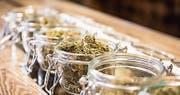 Cannabis mit weniger als einem Prozent THC darf legal verkauft werden. (Bild: PD)
