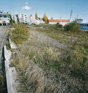 Seit Jahren eine Brachfläche: Das Güterschuppenareal beim Romanshorner Hafen. (Archivbild: Reto Martin)