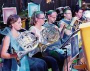 «Under the sea»: Die Musikanten waren dem Motto entsprechend verkleidet. (Bilder: Donato Caspari)