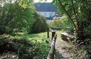 Der Ittinger Ranft befindet sich oberhalb der Nordmauer des Klosters. Drei Bänkli, ein kleiner Teich, ein plätscherndes Bächlein und ein Tobel laden zum Verweilen ein. (Bild: Christine Luley)