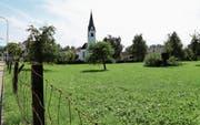 Auf der Dorfwiese im Tübacher Zentrum ist eine Überbauung mit 72 Wohnungen und Geschäftsräumen geplant. (Bild: Linda Müntener)