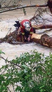 Handarbeit: Die Feuerwehr birgt bis zu 25 Meter lange Stämme. (Bild: pd)