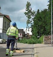 Hanspeter Baumann hievt mit seinem Kran einen gefällten Baum vom Scherbenhof auf die gesperrte Amriswilerstrasse. (Bild: Mario Testa)