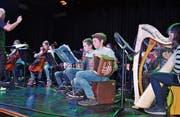 Ob mit Harfe oder Schwyzerörgeli - musizieren macht Spass: Das bewiesen die Goldacher Musikschülerinnen und -schüler an ihrem Abschlusskonzert des 35. Musiklagers Goldach. (Bild: Ramona Riedener)
