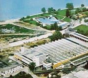 Damals Zankapfel: Der Landstreifen vor dem Seepark. (Bild: Archiv me)