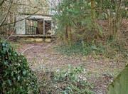 Auf dem bewaldeten Areal gibt es einige bunkerähnliche Bauten und Baracken. (Bild: Reto Martin)