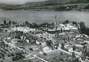 Bis im Jahr 1974 betrieb unter anderem die Kunstseiden AG (mit hohem Kamin) ihren Produktionsstandort auf der Feldbachhalbinsel. (Bild: alt-Steckborn.ch/PD (Anfang 1950er-Jahre))