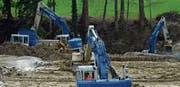 Drei grosse Bagger graben sich derzeit durchs Hagenwilertobel. Die Erdmassen werden mit Kalk vermischt und dann für den Wiederaufbau des Damms verwendet. (Bild: Mario Testa)