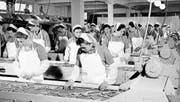 Auf dieser Bär-Fotografie aus dem Jahr 1958 sind Hero-Arbeiterinnen zu sehen, die Bohnen verlesen. (Bild: pd/Stadtarchiv Frauenfeld)
