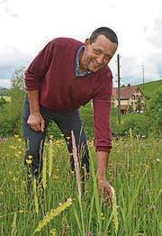 Jürg Hebeisen achtet darauf, dass die artenreichen Blumenwiesen mit anderen Lebensräumen vernetzt sind. (Bild: ker)
