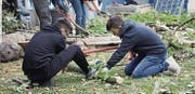 Zwei Jugendliche sägen Bäume im Rahmen des Projekts. (Bild: PD)