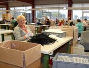 Rund 90 Männern und Frauen bietet das Dock in Haag eine Arbeit. (Bild: Corinne Hanselmann)