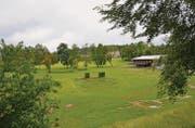 Eine Option ist, die Reithalle in die Mitte des Grundstücks zu verlegen, damit sie als Zentrumsgebäude für den Familienpark dienen könnte. (Bild: Philipp Haag)