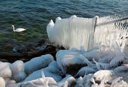 Am Bodenseeufer bildeten sich Endes des Monats spektakuläre Kunstwerke aus Eis. (Bild: Andreas Walker)